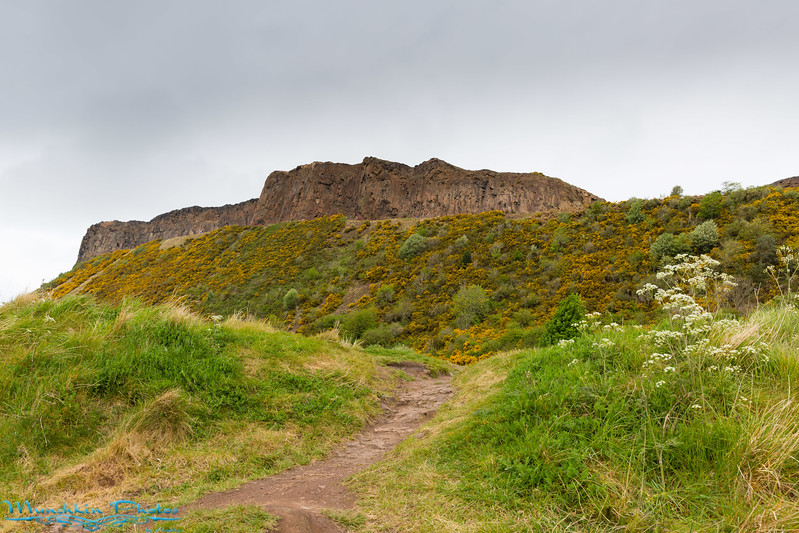 The  path leading up to Arthur's Seat
