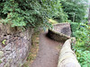 Scotland Trip: 9 August 2005: A path up to Caton Hill
