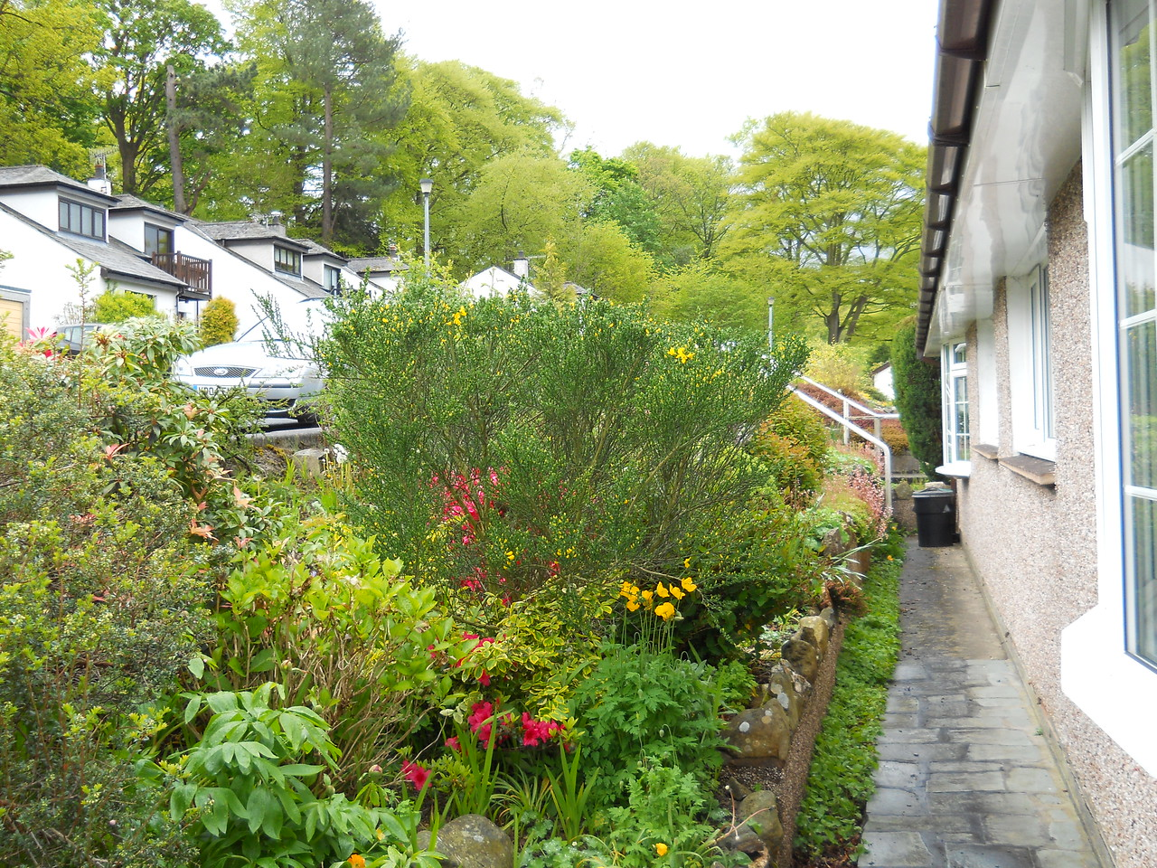 The front garden - the street is higher than the cottage