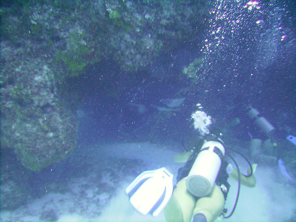 Scuba in Cozumel (July 2008)