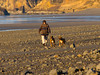 "Arch Cape, Oregon  These dogs are the ""Beach Patrol"""