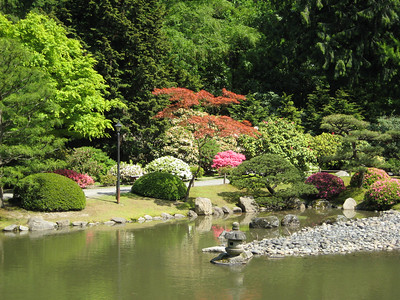 The Pond in the Japanes garden  (Al's pic)