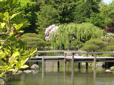Japanese garden (Al's pic)