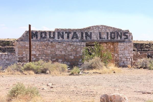 Mountain Lions at Two Guns