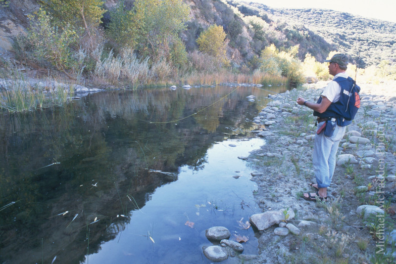 Fishing Sespe Wilderness Los Padres National Forest