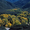 Ojai Valley  Color of Ojai   , Light & Spirit