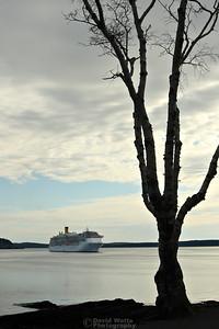 Cruise Ship in Bar Harbor