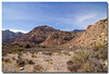 2007-02-09_Red_Rock028