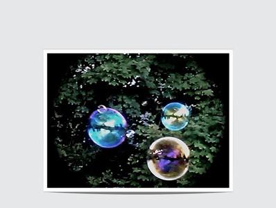 The Bubble Craze...