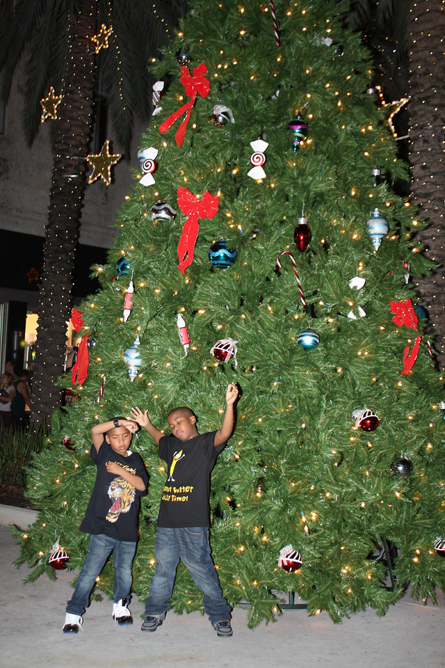 Now this is what I call a Big Azz Christmas Tree.
