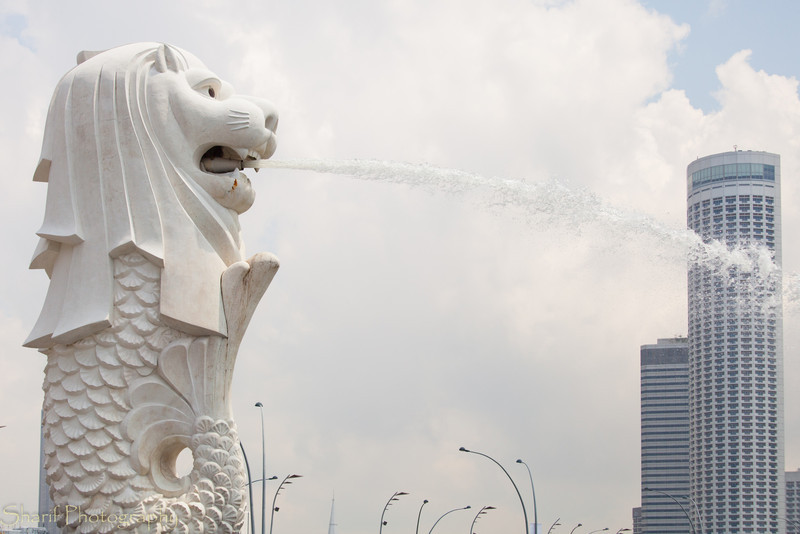 A cross between a mermaid and a lion is the symbol of Singapore.