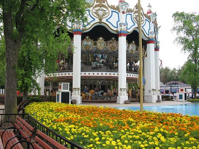 Columbian Carousel and flowers