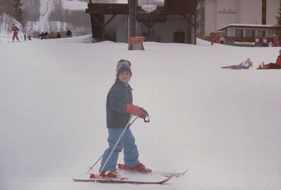 Snowmass 1986