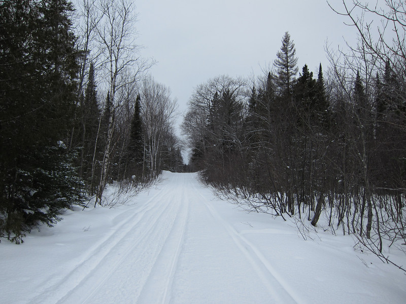 Found some barely used logging roads.