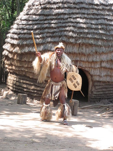 "Today was a travel day from Swaziland back into South Africa - to Hluhluwe (pronounced, oddly enough as ""Shushulee""). There, we visited a replica of a Zulu Village, with real Zulus playing the parts of its inhabitants.  A Zulu warrior greeted us at the entrance."