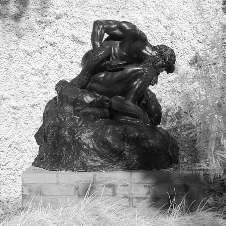 Brookgreen Gardens Poetry Garden Infrared