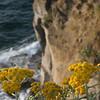 ... and the cliffs are impressive
