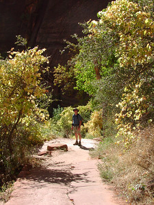Joe at the base of the Angel's Landing hike.