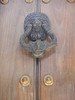 Lion door knocker!