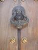 Lion door knocker!