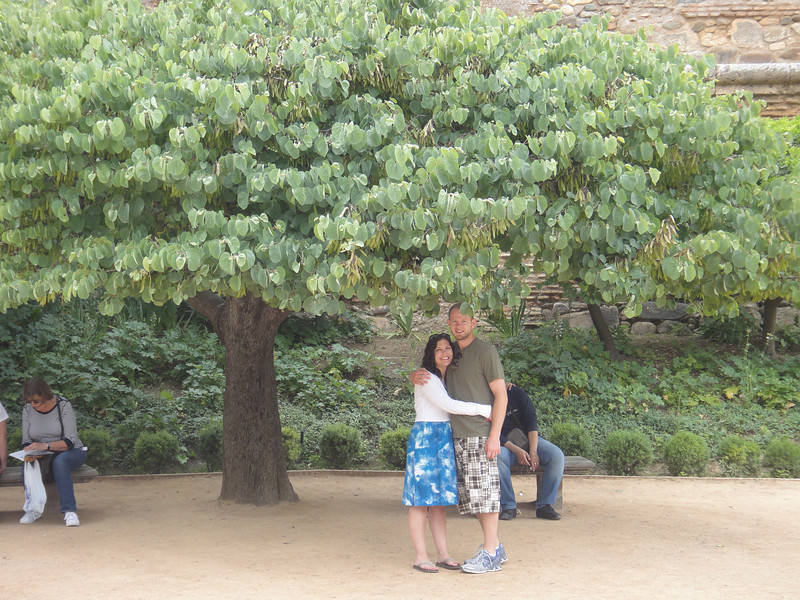 Paul and me under a giant Ginko tree