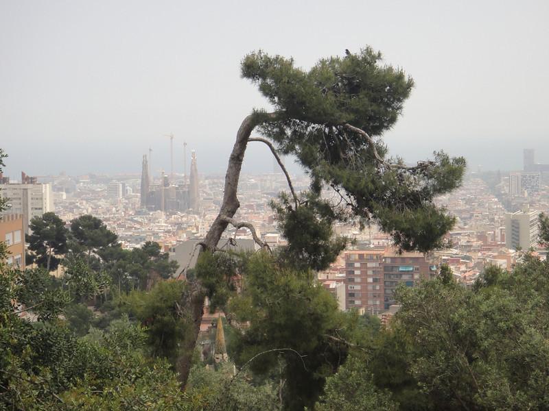 Barcelona - La Sagrada Familia from Park Guell