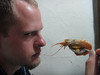 Staredown with the langostino