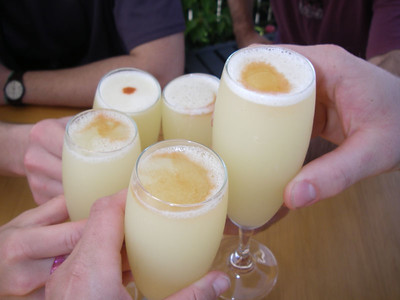 Cheers!!!  Pisco Sour, the must-drink for all gringos in Chile