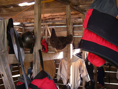 Photo by Campion - the gear shed, with its own wildlife