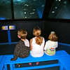Lego Land Aquarium, March 2010