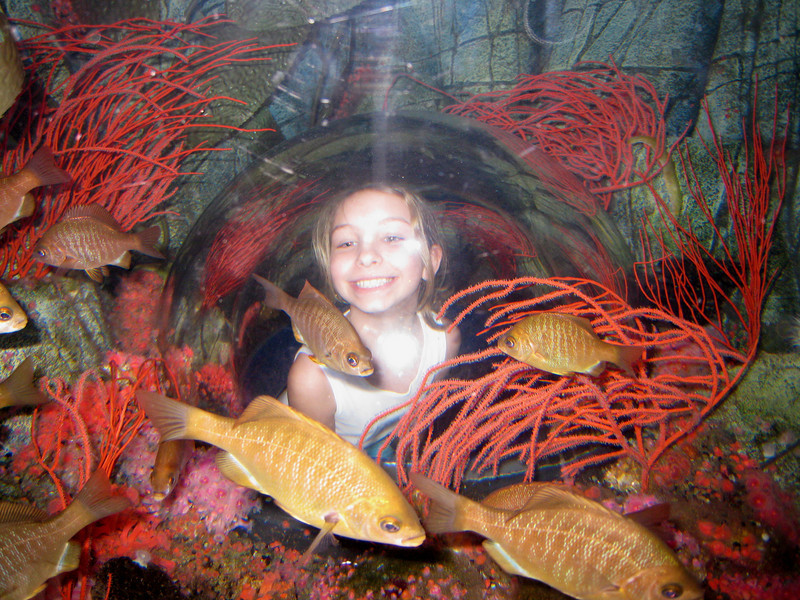 Vanessa Lynne with the fish at lego land aquarium
