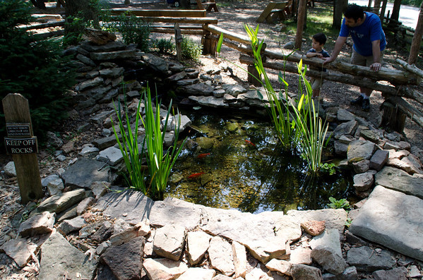 Jim's St Louis Bird Sanctuary