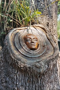 Another Tree Spirit, the only with face outward.