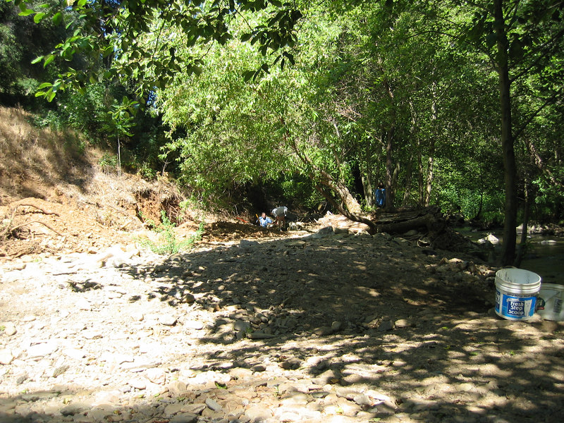 A great perspective of the site:  On the far right is the flowing creek, in the center is the hole we were digging, and to the far left is the bank leading up to the roadway.