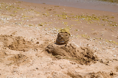 Enjoying the beach to ourselves on South Manitou Island (in Lake Michigan.)  This is Sandy, Mark's creation.