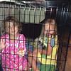 Lauren & her buddy Jordan in Abby's crate