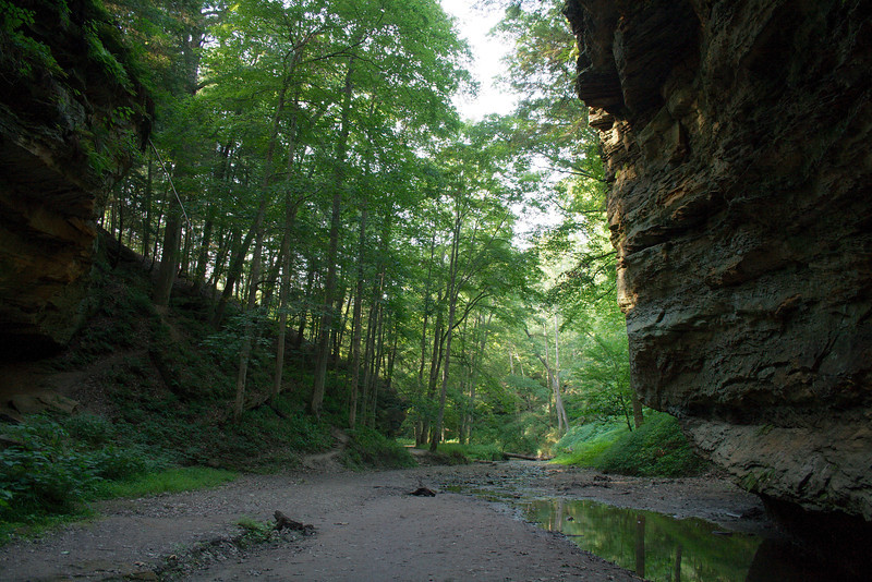 "Breathtaking Trails<br /> Turkey Run State Park - Trail 6<br /> Around the Turkey Run State Park Inn<br /> <br /> This was the first trail we hiked and it is breathtaking! Much cooler down in the gully, crevice or whatever it's called. If you ever get the opportunity I highly suggest visiting Turkey Run for a few days - even if it is sweltering hot like during our visit. Make sure you're in shape and ready to hike. I need to continue working out so I can better enjoy the trails next time we visit.<br /> <br /> Park Trails Map: <a href=""http://www.in.gov/dnr/parklake/files/turkey_run_trail.pdf"">http://www.in.gov/dnr/parklake/files/turkey_run_trail.pdf</a><br /> Official Park Site: <a href=""http://www.in.gov/dnr/parklake/2964.htm"">http://www.in.gov/dnr/parklake/2964.htm</a><br /> Google Map: <a href=""http://goo.gl/maps/HAUB"">http://goo.gl/maps/HAUB</a>"