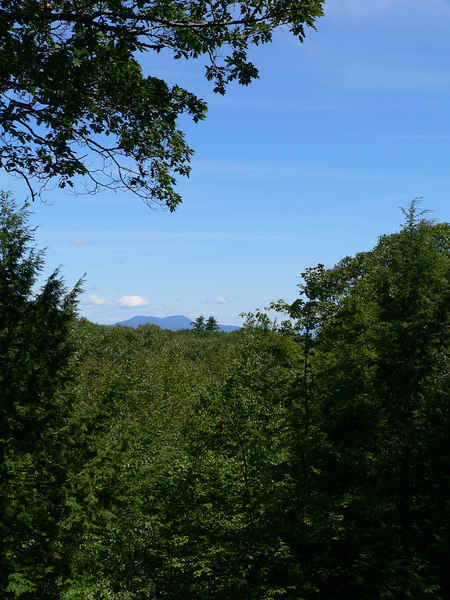 View of Mt. Greylock from Kennedy Park, Lenox