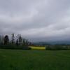 Green grass near Kapell