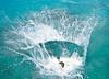 Kevin's splash