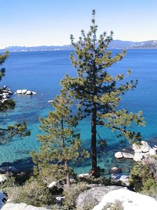 On the drive from South to North Tahoe, we stopped at this amazing spot.  Panorama still-to-be-assembled.