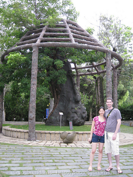 Connie and I in front of the large Buddha's Belly tree
