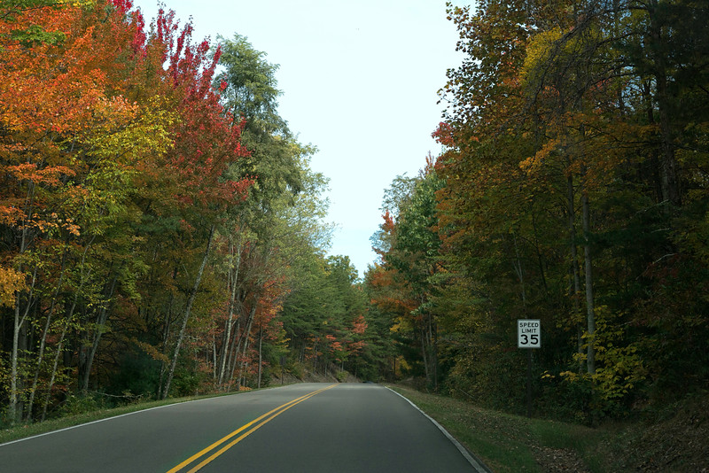 Fall colors along Foothills Parkway between Gatlinburg and Hwy. 40, NC.