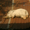 Elephant on a hot tin roof