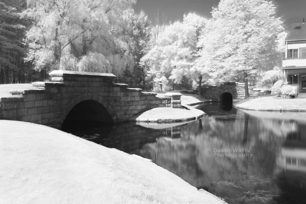 The Ponds at Foxhollow, Infrared
