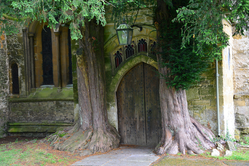 shallow north porch from the 17th century masks a 13th-century moulding on the north door, which is framed by yew trees. The north aisle features three late tracery windows and one small 13th-century lancet