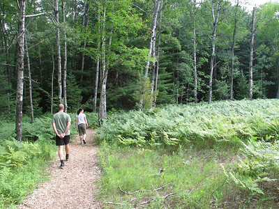 Nature walk with Glyn, Ezra, Sally, Colin and Papa.