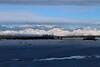Denali foothills
