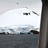 Antarctica from the port side of the ship.  It's not an iceberg and you can tell by the land underneath.