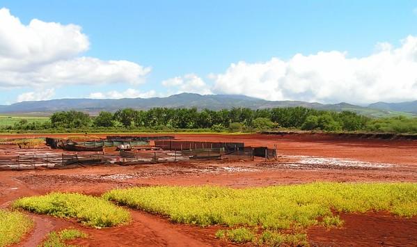 PICT3354s, Salt Ponds , Hanapepe, aug 20, 2005